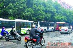"""城新路:树枝""""吻""""上公交车 潮州新闻 南方网"""