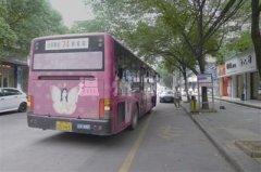 温州最慢公交车:1天仅两车对开 100分钟来一班