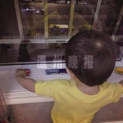 温州两岁半男孩痴迷公交车 每晚数完5辆公交车再