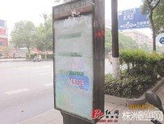 株洲4块公交站牌钢化玻璃被砸 一块造价需8000元
