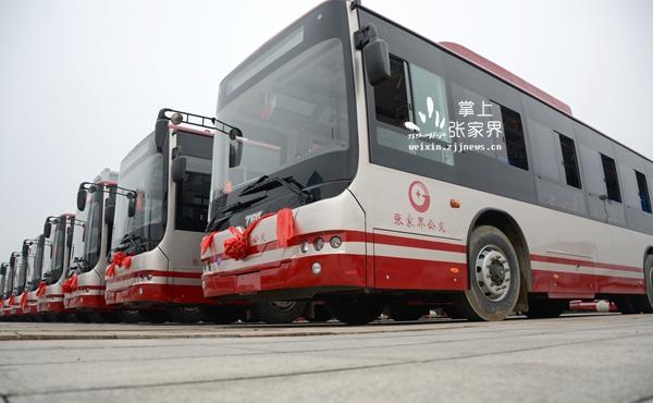 张家界首批新能源公交汽车 上岗图片