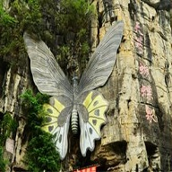 天籁·蝴蝶泉