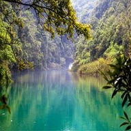 茂兰喀斯特森林自然保护区