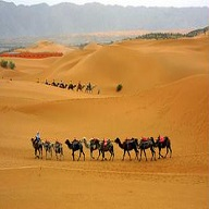 沙坡头旅游区