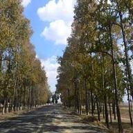桦皮岭风景区