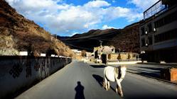 2003春节成都九寨冬日游