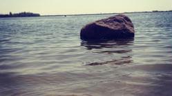 南海湿地保护区
