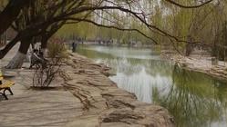 阿尔丁植物园