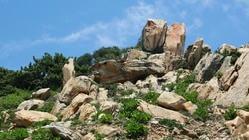 鹅尾神石园