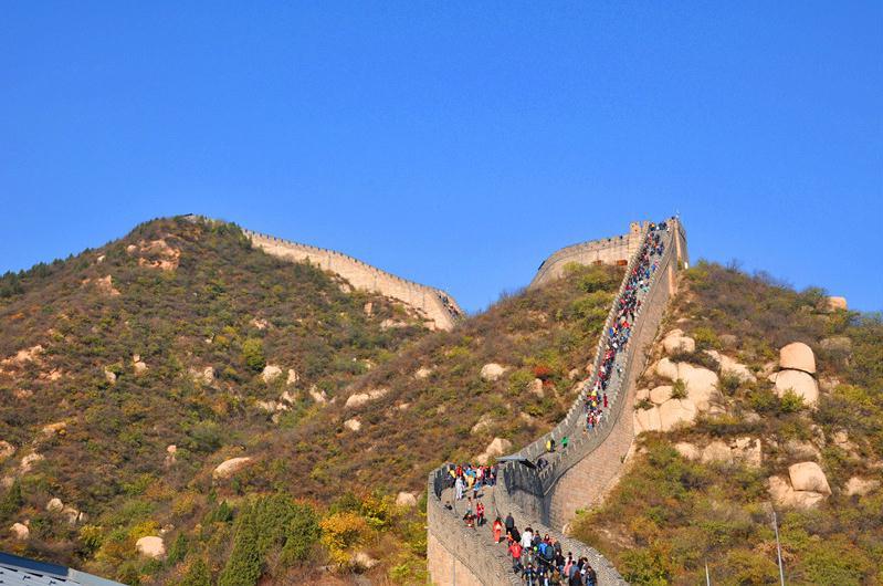 清明不想走远?北京市内公园走起
