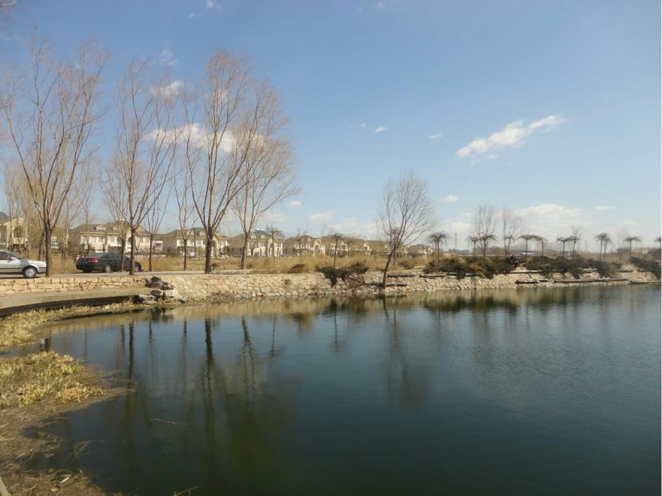 北京玉渊潭公园里打鸟的人
