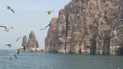 胶东行(一)蓬莱、长岛——原创作品
