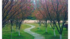 徐特立公园