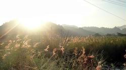 梅林湖风景区