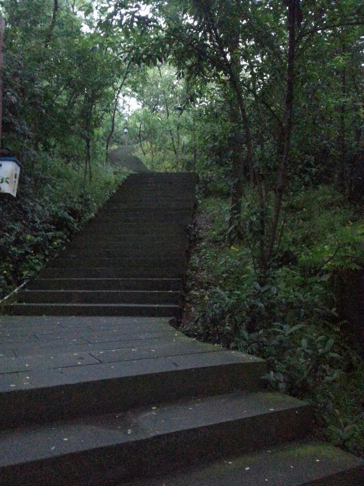 鸿恩寺森林公园