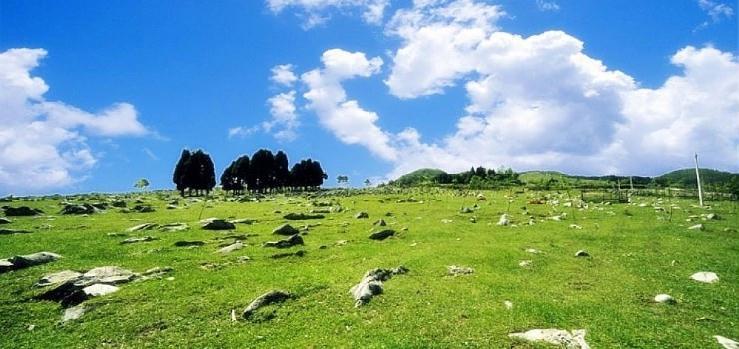 重庆千野草场景区