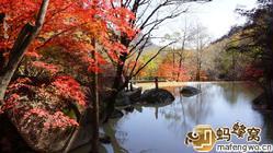天桥沟森林公园