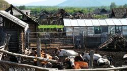 2007年国庆 东北自助行流水账 哈尔滨―漠河―满归―室韦―海拉尔―满洲里―齐齐哈尔