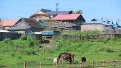 内蒙古。额尔古纳。湿地黄昏02(13张)