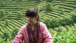 八月桂林之行的路线安排
