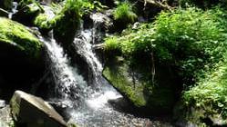 五常凤凰山国家森林公园