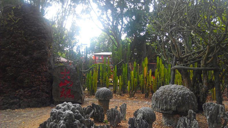 火山森林公园