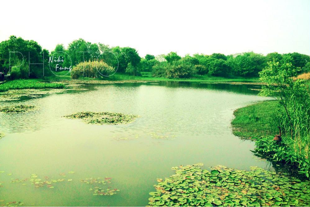西溪湿地国家公园
