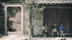 """【鉴赏】""""成窑遗珍——景德镇出土成化官窑瓷器展""""欣赏(10)(组图)"""