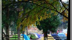 鹿湖顶自然保护区