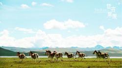 西藏日记3、山南