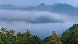 广东车八岭国家级自然保护区