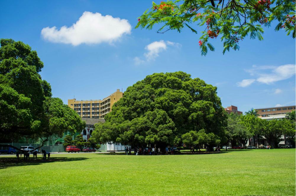 国立成功大学