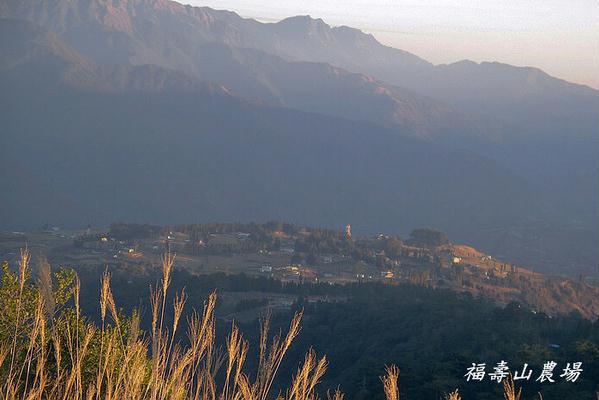 福寿山农场