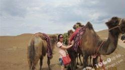 库尔塔格沙漠