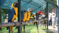 威海旅游_神雕山野生动物保护区