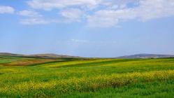 【春】新疆乌鲁木齐•白云深处有人家
