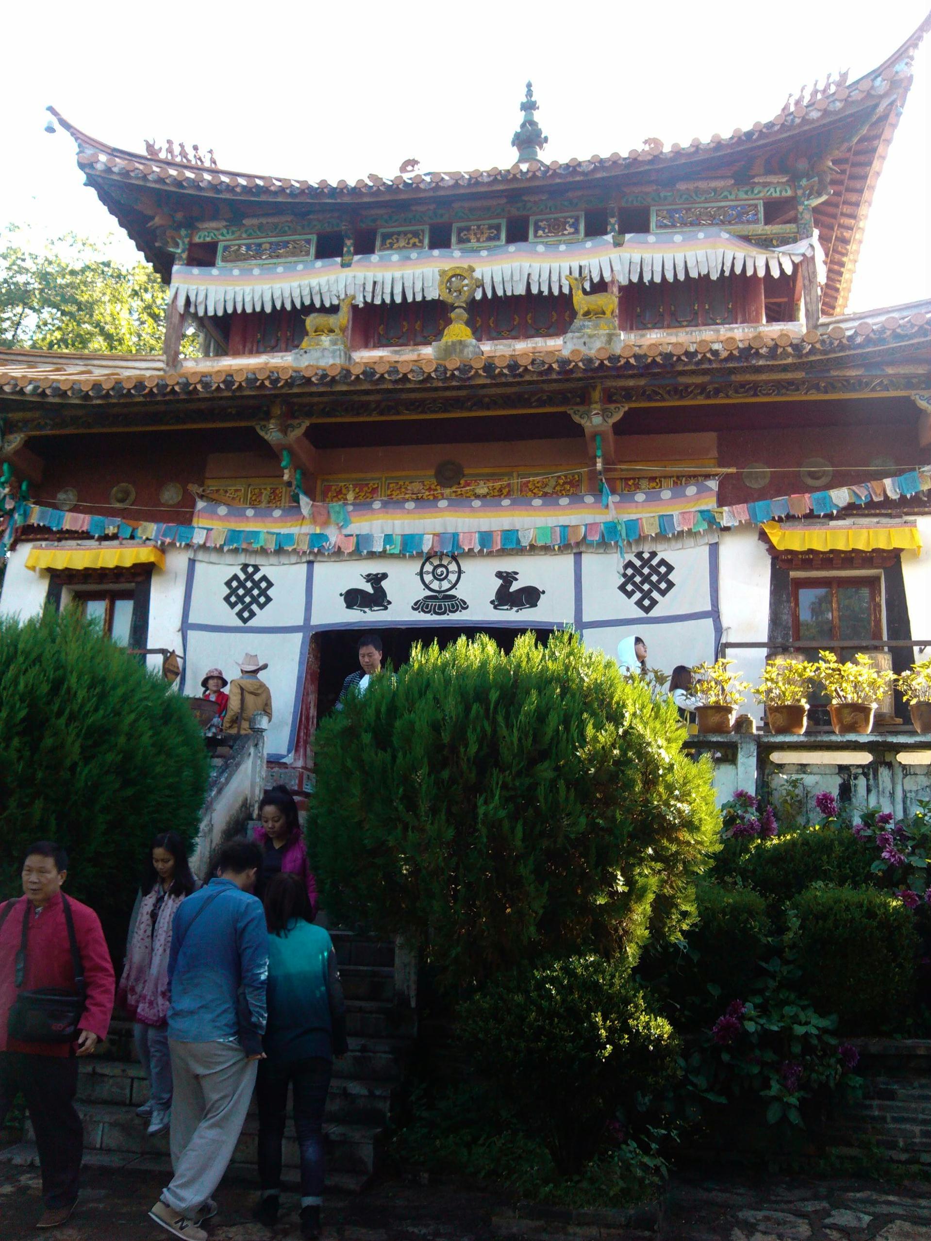 藏药博物馆