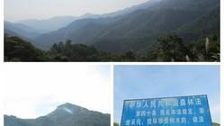 阳江 • 阳西月亮湾(2011.08.27)