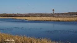 新青国家湿地公园