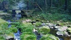 秋季张家界最佳旅游景点推荐